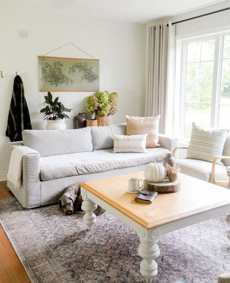 The new area rug and pillow line with Amber Interiors and Loloi Rugs is live! I love the organic modern look they add to my living room with some vintage flair. #loloirugs #amberinteriors   #LTKSeasonal #LTKunder100 #LTKhome