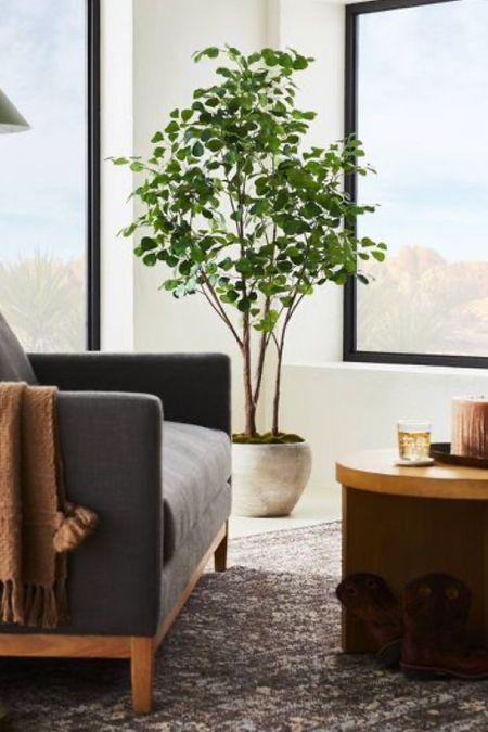 Studio McGee Target faux ficus tree! Faux tree, olive tree, ficus tree, tall indoor plant   #LTKhome #LTKSeasonal #LTKsalealert