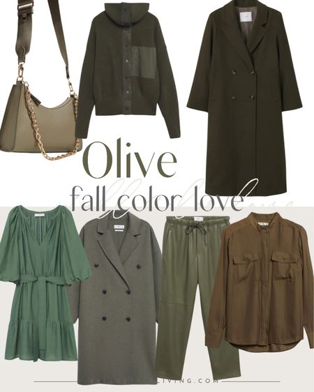 Shop one of this season's hottest colors-  Olive!  You'll love pairing this with taupe, khaki and even winter whites!   #LTKstyletip #LTKworkwear #LTKSeasonal