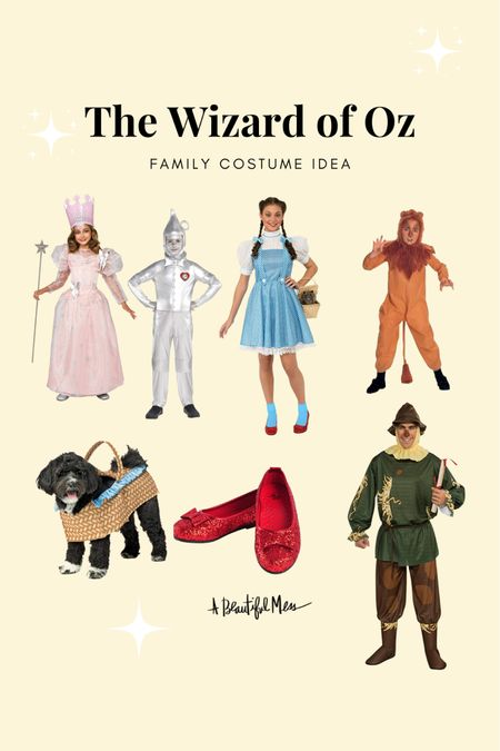 The Wizard of Oz costume ideas from Amazon   #LTKunder50 #LTKSeasonal