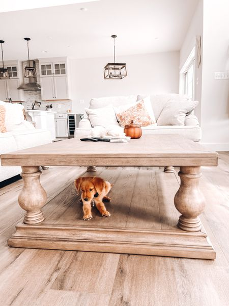 Jackson is loving the new coffee table   #LTKhome #LTKstyletip #LTKfamily
