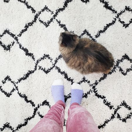 """Pro Tip! Porcelain tile floors look great, but they make for a COLD house! A quick fix?  Get a cute rug!  Super inexpensive, threw it in my cart, and it helped bring some warmth to the room instantly.  YES, I did it before the storm hit.  I love this particular style for rugs because it pretty much goes with everything.  It's like a """"neutral"""".  I have a similar one in my office at work, too.  Effortless, easy, inexpensive and warm!  Swipe to see a snippet of our ICE pool and what THIS morning looks like...  yes MORE SN❄️W! (Shop this style here 👉 http://liketk.it/38Akb ) @liketoknow.it #liketkit #LTKhome @liketoknow.it.home"""