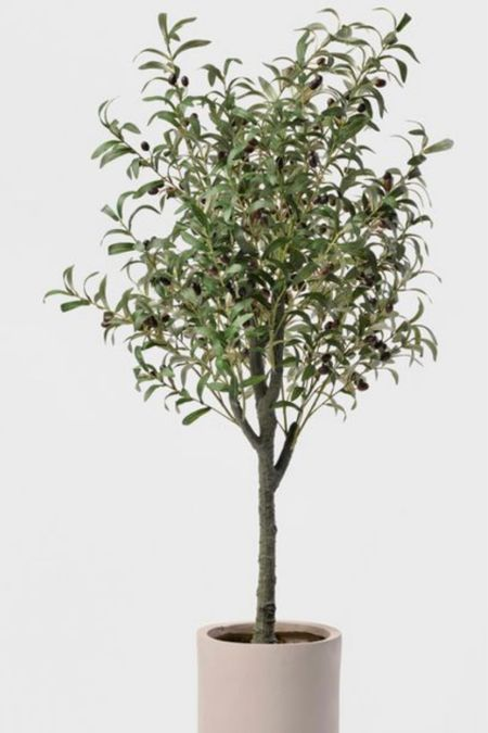 """Looking for some spring updates around the house, and this 60"""" potted olive tree is gorgeous for just that. http://liketk.it/38z1U #liketkit @liketoknow.it"""