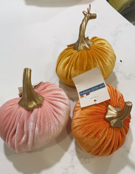Cutest mini pumpkins in the @target dollar section for $1!!!!! RUN 🧡🧡🧡   #LTKunder50 #LTKhome #LTKSeasonal