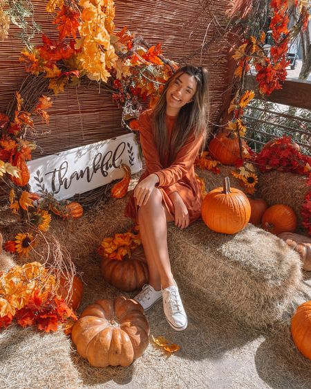 Loving this adorable orange dress for fall! It's also on sale for $20. Would be super cute for thanksgiving 😍 http://liketk.it/30yp3 #liketkit @liketoknow.it #LTKsalealert #LTKunder50 #LTKstyletip