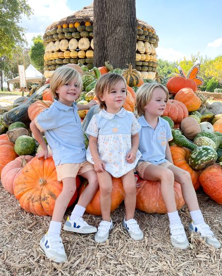 Three little pumpkins 🎃🤍 One of our favorite fall traditions - visiting pumpkin village at @thedallasarboretum #ootd #fashion #fall #fallfashion #brothers #siblings #dallas #vejakids #nordstrom #dondolo #pumpkinpatch #dallasarboretum   #LTKkids #LTKunder100 #LTKfamily