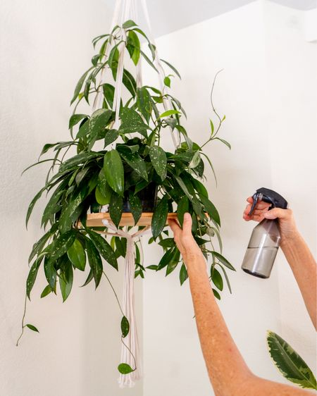 """I have 4 of these, or ones that are very similar. They're very lightweight, unlike ceramic hanging pots. It holds up to an 8"""" grow pot but you can group 3 or more 4"""" plants on this. I love that my Hoya twines up the rope hangers.  This spray bottle is also a must have for me since I live in the dry desert and have a lot of tropical plants that like humidity. It's small and easy to grip!    #LTKhome"""