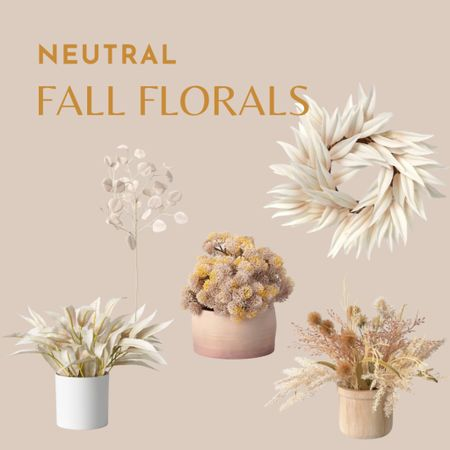 Fall wreath, white fall wreath, dried flowers, neutral fall decor, target finds   #LTKSeasonal #LTKhome #LTKunder50