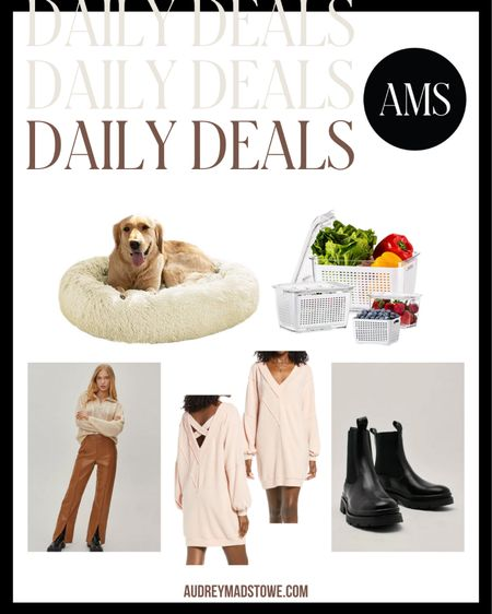 DAILY DEALS 🙌  — Dog bed for they fur babies — Produce saving containers for your kitchen/fridge organization — Spilt hem faux leather pants (SO trendy) — Deep v-neck dress — Chelsea boots perfect for fall and winter   #LTKsalealert #LTKunder50 #LTKstyletip