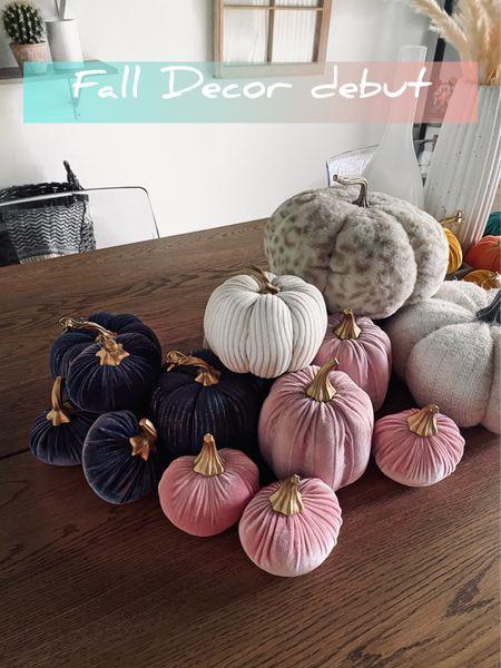 Fall decor is here! Got everything for under $100!! Shop some of my favs! #falldecor #pumpkindecor #targetfinds #decorating #seasonaldecor  #LTKunder100 #LTKstyletip #LTKSeasonal