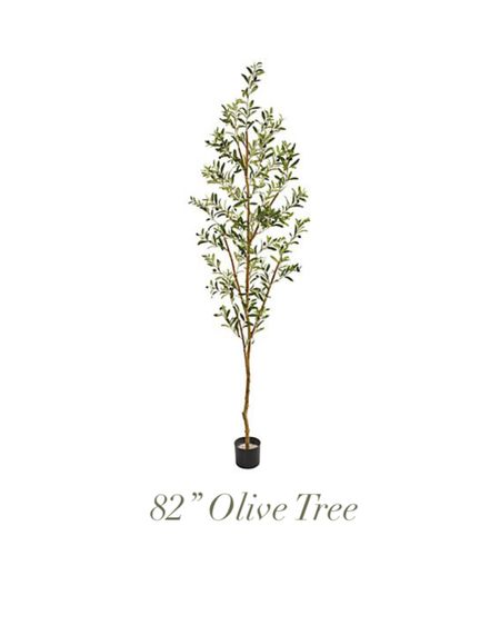 """Olive tree   nearly natural   82"""" tree   artificial tree  http://liketk.it/36ZYt #liketkit @liketoknow.it   #LTKhome @liketoknow.it.home  Shop your screenshot of this pic with the LIKEtoKNOW.it shopping app"""