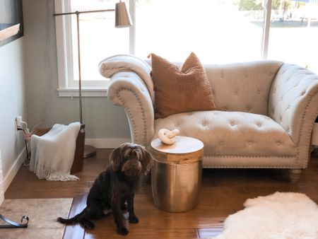 Target Task lamp, leather basket and Studio McGee limestone knot. One of our favorite spots to sit with our pup   #LTKSeasonal #LTKhome #LTKunder50