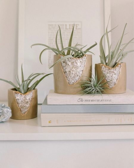 These geode crack planters would make a great gift! Each one is hand dyed with organic materials and only available on Etsy!   #weddinggift #giftideas #etsy   #LTKhome #LTKwedding #LTKunder100 http://liketk.it/3g0yq #liketkit @liketoknow.it