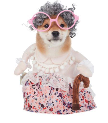 Dog grandma pet costume in sizes XS - XL   #LTKfamily #LTKkids #LTKstyletip