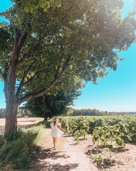 White dress and a straw hat in a sunflower field 🌻💁♀️ http://liketk.it/2W5tF #liketkit @liketoknow.it