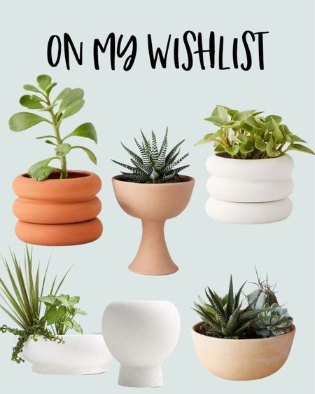I am redecorating my houseplant display table and these are all on my wishlist. I live the simple and modern design of these houseplant pot. Houseplant, indoor plant, plant pots, terra cotta pot, modern pot, houseplant bowl.   #LTKhome #LTKstyletip