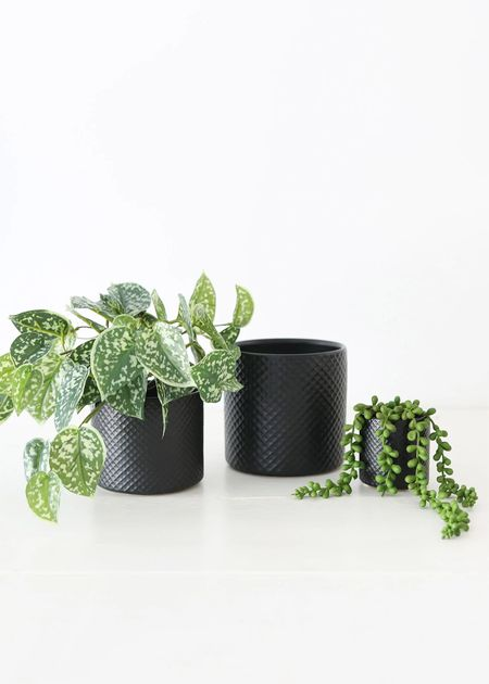 Grab some pretty black pots for year round decor or for not so spooky Halloween accents 🖤    #LTKhome #LTKSeasonal #LTKstyletip
