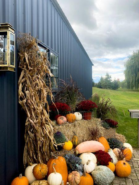 Oh my gourd! We love October 🍂 Loving this brass lantern on these chilly nights! . . . . . #beautifulchaos #divinelydesigned #fall #falldecor #blackbarn #blackexterior #ironore #countrylivingmag #betterhomesandgardens #minnesota #autumn #husbandandwifeteam  #LTKfamily #LTKhome #StayHomeWithLTK