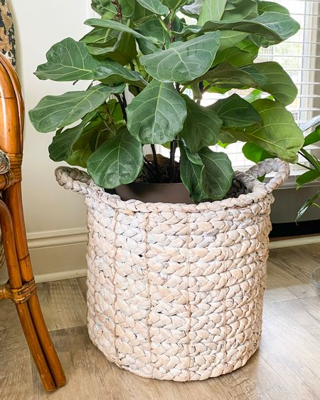 Baskets are a quick & easy way to disguise an indoor plant's straight-from-the-store pot. I love an assortment of mixed and matched baskets in similar materials but varied textures. Target, TJMaxx/Homegoods and Wayfair are great places to snag them in expensively. http://liketk.it/36sp4 #liketkit @liketoknow.it