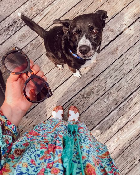 The exact moment she realized it was just my sunglasses, not a bone. 🤷♀️  S W I P E 👉 for my favorite amazon purchases on the @liketoknow.it app or visit http://liketk.it/2CkIT for product links to: . 🕶 my three favorite sunglasses under $25 👡 two pairs of sandals under $25 I'm wearing all summer 🏃♀️ my running shoes 👗 this outfit And more! #liketkit #LTKshoecrush #LTKunder50 #LTKhome
