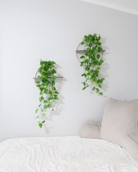 ugh comforter. fake decoration plants. back pillow. amazon finds. http://liketk.it/2WmLQ #liketkit @liketoknow.it
