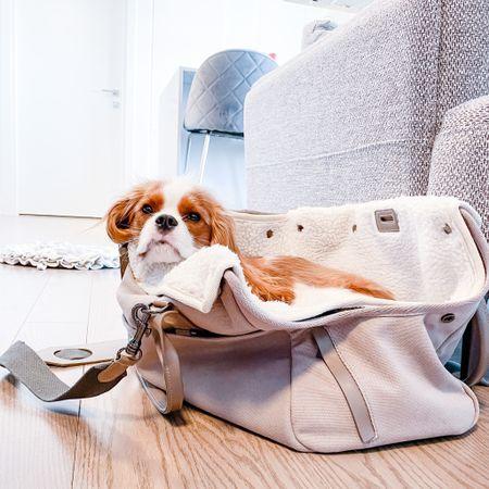 travel bag, pet carrier, on the go, spring travel, dog bag, Maxbone   Code HENRY gets you 15% off your Maxbone purchase   #liketkit http://liketk.it/3aqX8 @liketoknow.it   #LTKitbag #LTKtravel #LTKdog