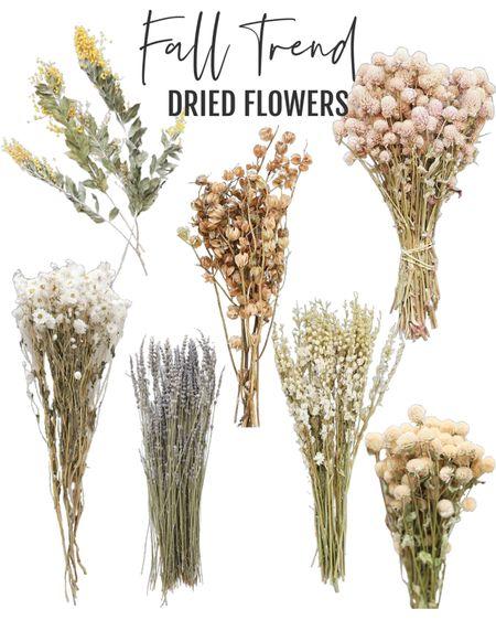 Fall decor trend | dried flowers | farmhouse style | modern florals | afloral   #ltkstyletip   #LTKhome #LTKSeasonal #LTKunder50