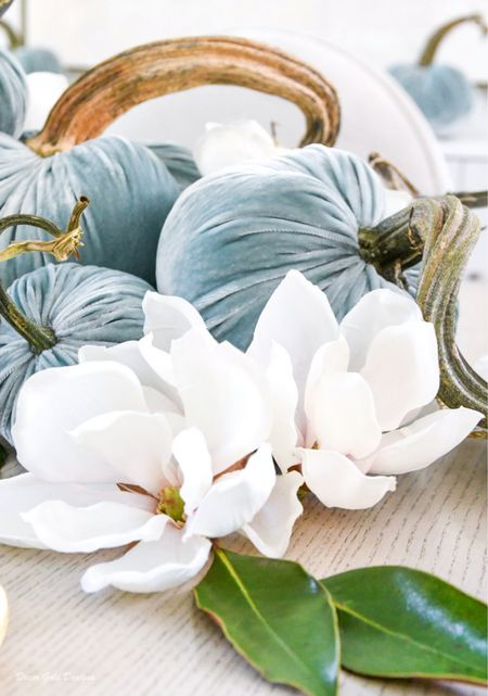 Magnolias (faux)  The color of these velvet pumpkins is seafoam, but I have linked another blue I love called lake #fall #falldecor   #LTKhome #LTKSeasonal