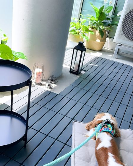 Summer balcony. Home decor. Balcony decor. Summer vibes. Interlocking floor tiles. Amazon Finds. Ikea Finds. Artificial plants. Basket Planters. Maxbone dog bed.     Follow @henrythesmol on the LIKEtoKNOW.it shopping app to get the product details for this pic and others!  http://liketk.it/3imLH #liketkit @liketoknow.it #LTKfamily #LTKhome