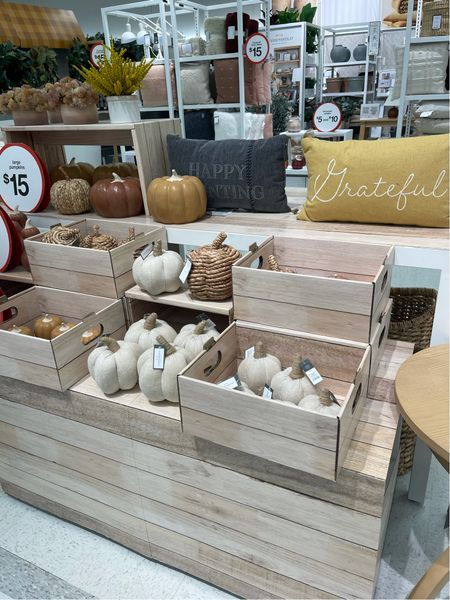 If you are on the hunt for fall decor: Target!!! So much cute home decor and so affordable, I love all the pumpkins for fall!   #LTKfamily #LTKhome #LTKunder50