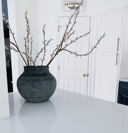 I got this stunning vase and I have to say the clean lines with high decor it gives my kitchen is beyond words.  #LTKstyletip #LTKhome #LTKunder100