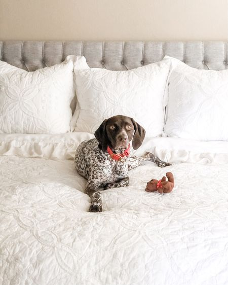 Love our white bedding with elegant textures for our light and cozy bedroom style. Remi loves our comfy Casper king bed mattress and the ruffle bedding too 🤍 grey headboard, white duvet cover, white bedroom, neutral home, bedroom decor . Plush grey upholstered headboard. Farmhouse chic. Modern farmhouse style.   Shop your screenshot of this pic with the LIKEtoKNOW.it shopping app http://liketk.it/3jg5E #liketkit @liketoknow.it #LTKhome #LTKunder100 #LTKfamily @liketoknow.it.home