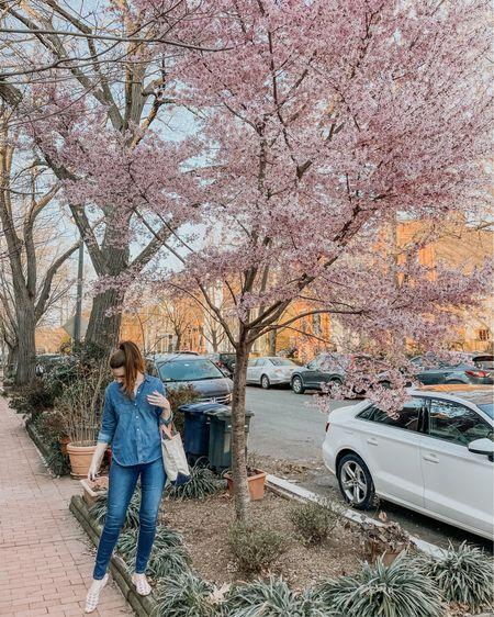 Frolicking around the first tree in the neighborhood to bloom 🌸    #liketkit @liketoknow.it http://liketk.it/3bhXX #LTKunder100