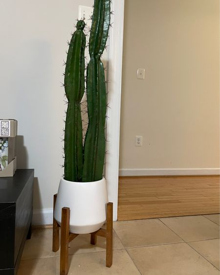 #liketkit @liketoknow.it http://liketk.it/3g1ia #LTKhome Hilton Carter artificial plants, Hilton Carter collection for Target, cactus plant, artificial house plants
