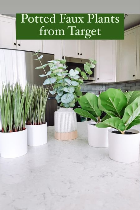 Faux plants from Target   #LTKhome
