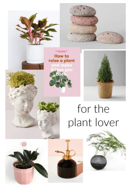 Gifts for plant lover. What to buy your indoor plant obsessed friend.  #LTKgiftspo #LTKunder50 #StayHomeWithLTK