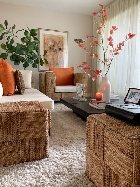 """Still adding subtle sparks of Fall around my home. For my living room, I added a new vase with the Fall branch, a new seasonal candle called """"harvest spice"""" in a lovely frosted glass jar (soy-based and burns very clean) and a couple velvety burnt orange pillows. I particularly like the dimension of these pillows, they were quite different than your standard squares, And they were a little flat which suits my furniture best in my living room, the standard fluffy down-filled pillows just don't seem to work in this space. They completed the look perfectly and makes the room feel very comfy, cozy and inviting. I burned the harvest spice candles and the scent is soft and divine. Check out the links below.   #LTKhome #LTKSeasonal #LTKfamily"""