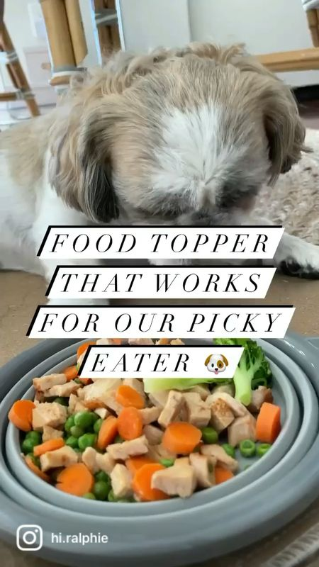 Food topper that actually works for our picky eater. 🐶 I wish I knew about this sooner.  #LTKkids #LTKfamily
