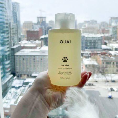 Spring must-have to keep you dog clean! Dog mom, OUAI hair care, Fur Bébé pet shampoo #LTKbeauty #LTKunder50 #liketkit @liketoknow.it http://liketk.it/3dIAm