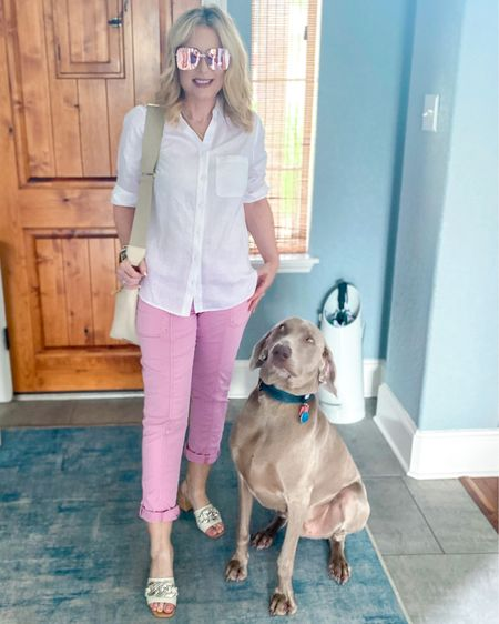 Check out that side eye!! 🧐 Someone is not happy about staying home while I head out for a lunch date! Get all the outfit details with the link in my profile or follow me on the @shop.ltk app! #summeroutfit #linenshirt #lovechicos #whbm #weimaraner #marniesatchel   #LTKshoecrush #LTKitbag #LTKunder50