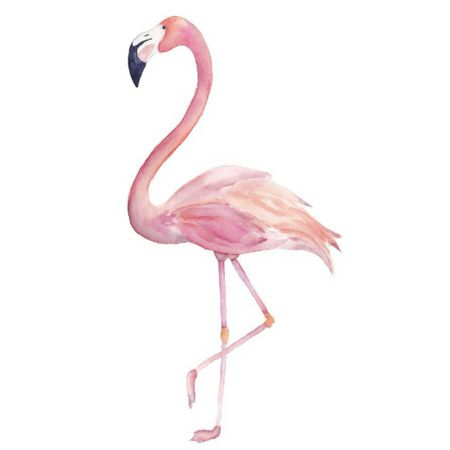 FLAMINGO    Be sure to stand on one foot when you take pics! #joiningjordan    http://liketk.it/2xB4F @liketoknow.it #liketkit