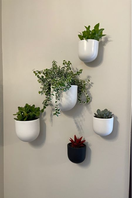 Waiting on one more pot for the upper left hand corner in my husbands office, but I love it so far! http://liketk.it/37GU1 #liketkit @liketoknow.it @liketoknow.it.home Screenshot this pic to get shoppable product details with the LIKEtoKNOW.it shopping app