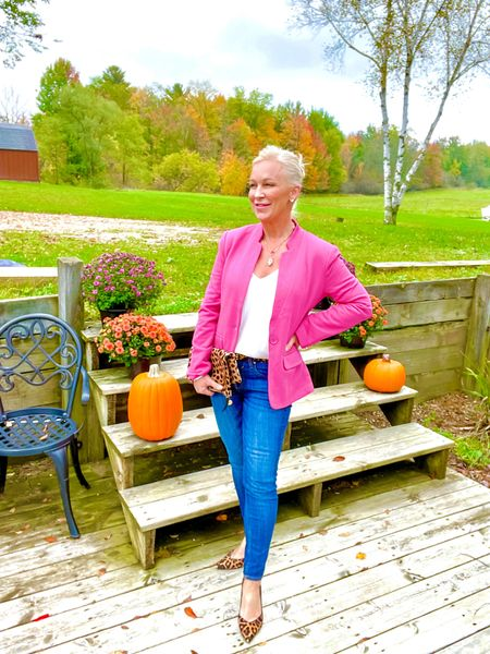 Pink Blazer paired with Leopard Accents (shoes, clutch, belt)  Street Look / Blazer Look / Work Blazer / Workwear / Work Wear / Office Look / Office Outfit / Business Casual / Office Casual / Work Outfit / Tory Burch / Kate Spade /  Coach Handbags / Handbag /petite / over 40 / over 50 / over 60 / Fall Outfit / Fall Fashion  #LTKitbag #LTKSeasonal #LTKworkwear