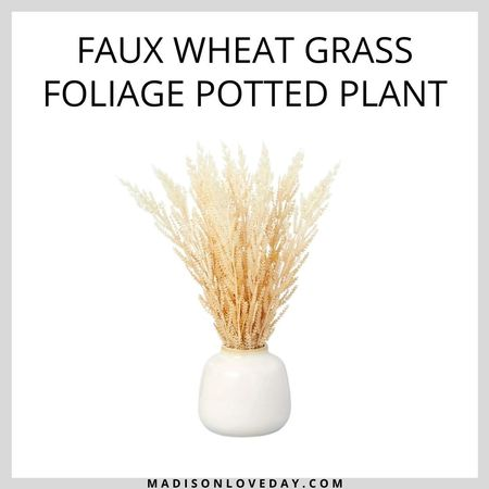 """17.5"""" Faux Wheat Grass Foliage Potted Plant - Hearth & Hand with Magnolia   Add a touch of natural texture to your indoor space with this Faux Wheat Grass Foliage Potted Plant from Hearth & Hand with Magnolia. This faux-plant arrangement decorated with wheat grass brings natural color and texture to your decor. Set in a white ceramic pot, it gives a neat, modern display to your space. This artificial plant stays fresh and beautiful at all times without the hassle and worry of maintenance. Place it on the entryway console or office table for welcoming appeal.     #LTKsalealert #LTKhome #LTKSeasonal"""