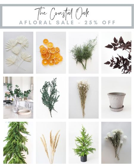 25% off with the code AUTUMN at afloral.  The fall and holiday collections sell out quickly so snag them now while you can and on sale!  Floral, holiday, cedar, norfolk pine, Christmas, coastal, stems, eucalyptus, home decor    #LTKunder50 #LTKsalealert #LTKhome