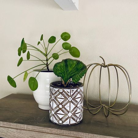 Adding a little touch of fall decor to my plants! Love how this wire pumpkin looks with these planter pots.   #LTKhome #LTKunder50 #StayHomeWithLTK