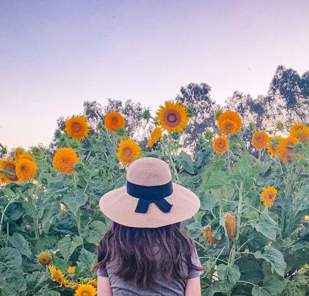 Straw hats for women this summer. Straw floppy hats. Straw hats under $50. Nordstrom finds. Amazon finds. Summer fashion. Summer outfit.   #LTKSeasonal #LTKstyletip #LTKunder50