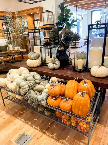 Give me all the pumpkins for fall!  Faux pumpkins Fall decor  Fall decorating  Fall home decor  Home decor  Seasonal decor   #LTKSeasonal #LTKhome