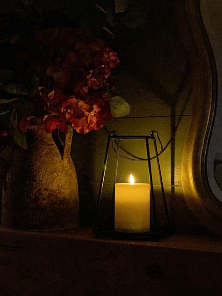Bringing in fall slowly, but beautifully. Love these real flicker lanterns from @lightsdotcom   #LTKfamily #LTKhome #LTKstyletip