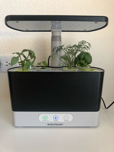 This Aerogarden comes with EVERYTHING you need to grow your own herbs. We were so surprised how quickly they all sprouted. Only took a few days!   #LTKunder100 #LTKhome #LTKgiftspo